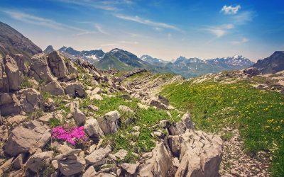 Sommer am Arlberg  Sport Matt SAISONSTART 16.06.18